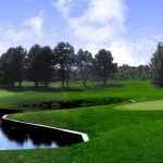 Bid now on a golf foursome with carts at Springville Country Club